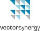 Vector Synergy Ltd.